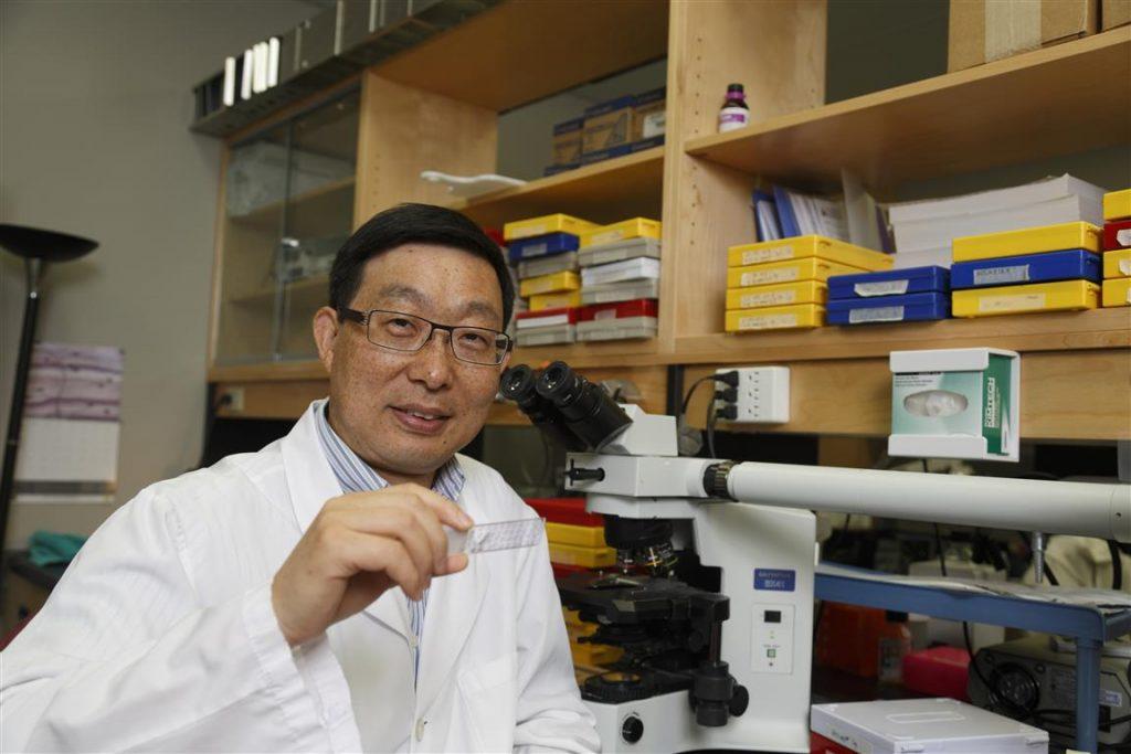 Dr. Feng